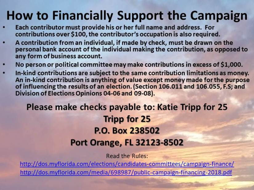 Financially Supporting the Campaign